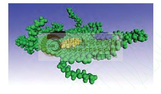 图1HCC大分子簇示意图